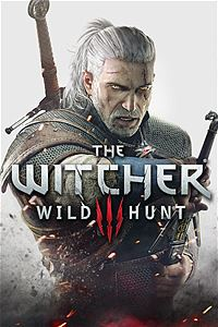 affiche-the-witcher-3