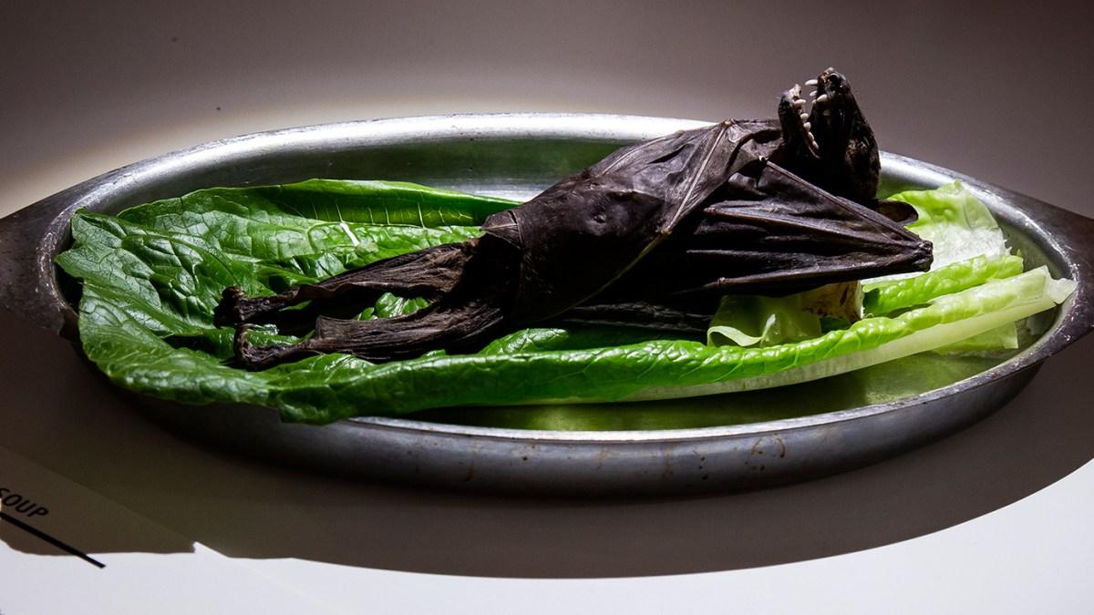 disgusting-food-museum-en-suede.jpg