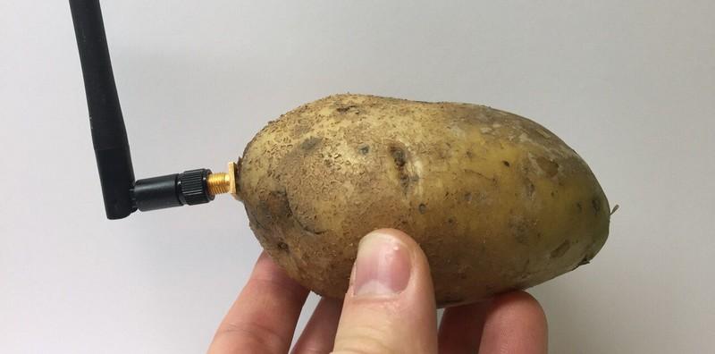 Photo de la pomme de terre connectée CES 2020