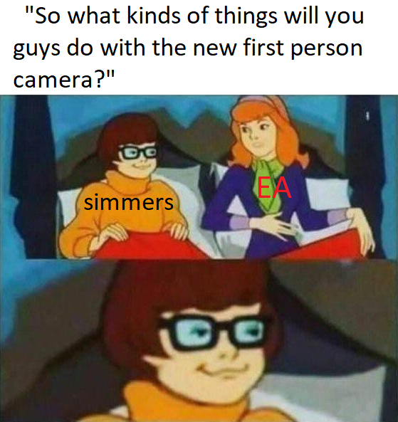 reddit-meme-sims-4-camera-premiere-personne-touches.png