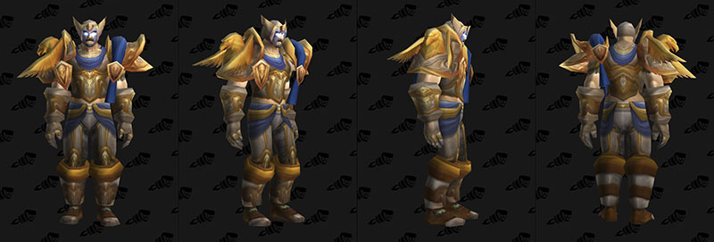set guerrier rare alliance