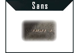spray-mastiff-sans-viseur